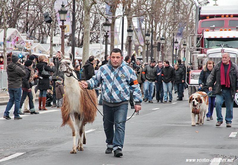 Grande Parade Champs Elysées