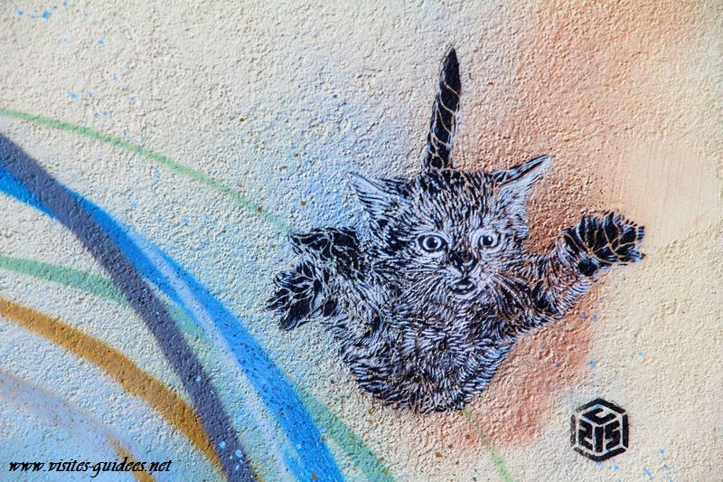 C 215 Vitry sur Seine