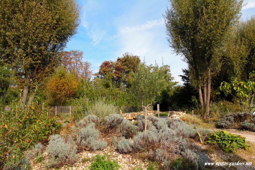 Parc de l'Ile Saint Germain le jardin des lavandess