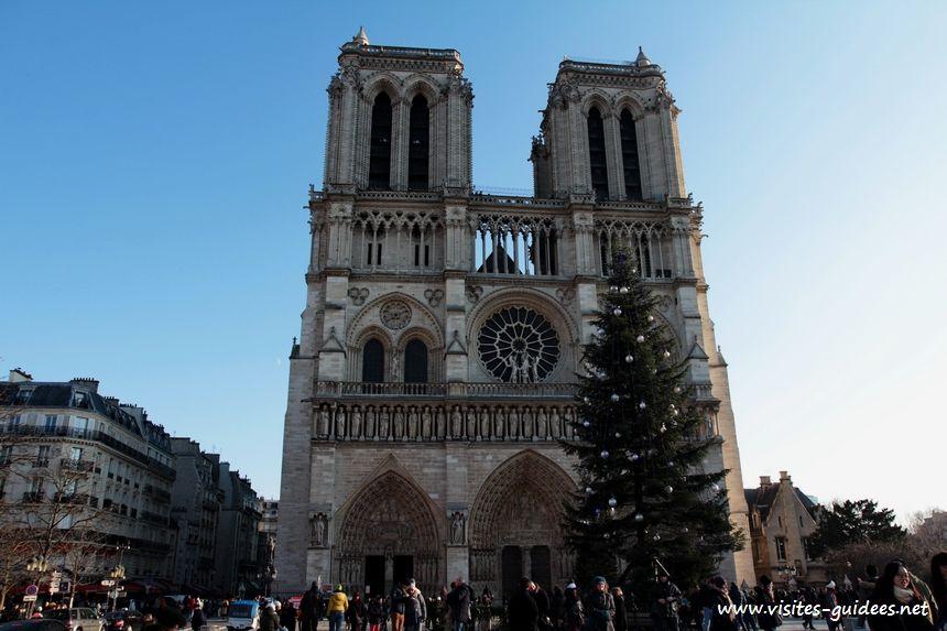 Sapin de Notre-Dame de Paris