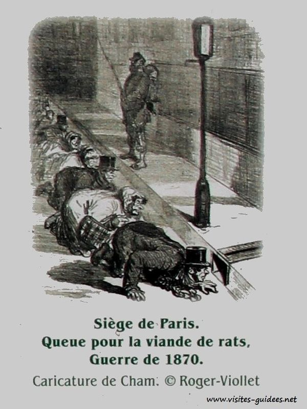 queue pour la viande de rat