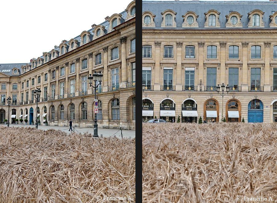 Blés Vendôme Place Vendôme Paris