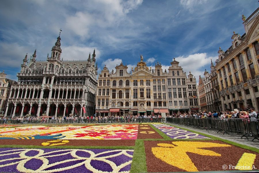 Flower Carpet Bruxelles