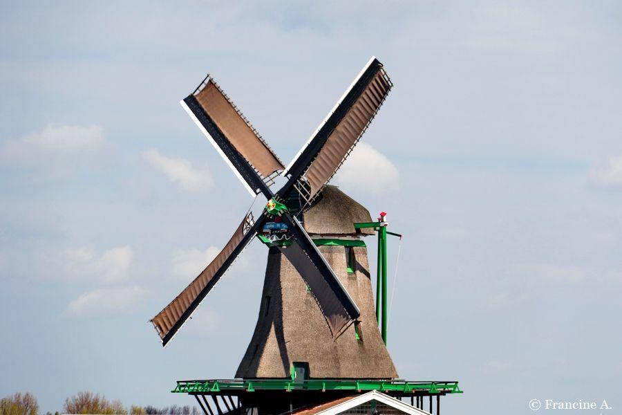 Moulins du Zaanse Schans