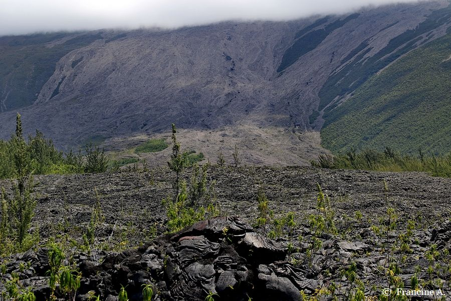 Le Grand Brûlé Route des Laves La Réunion