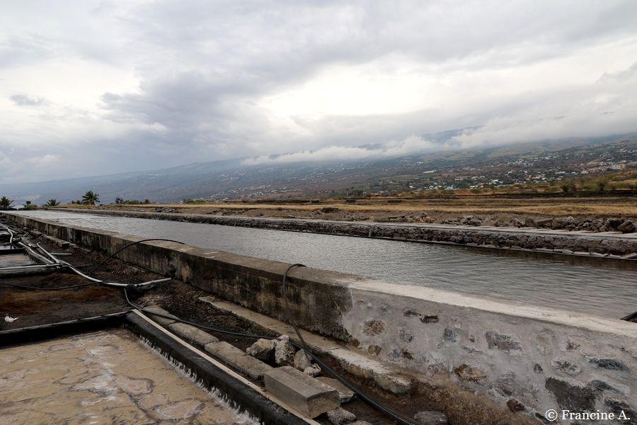 La Pointe au Sel Saint Leu