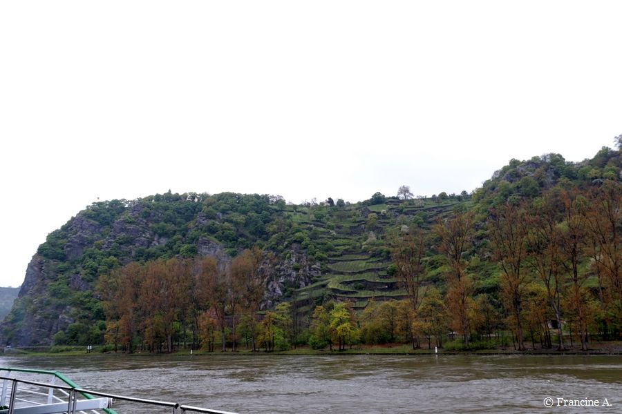 La Loreley