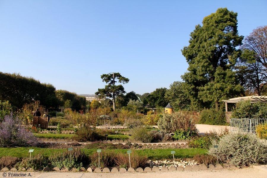 Ecole de Botanique Jardin des Plantes Paris